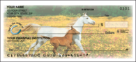 Horse Play Side Tear Personal Checks - 1 Box - Duplicates