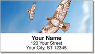 Red-Tailed Hawk Address Labels